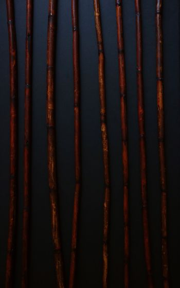 Bamboo background Full Frame No People Red Backgrounds Rusty Outdoors Day Close-up Corrugated Iron Dark Darkphotography Decor Bamboo Decor Background Asian Background Black Background Wood Sticks Nature Long Bamboo