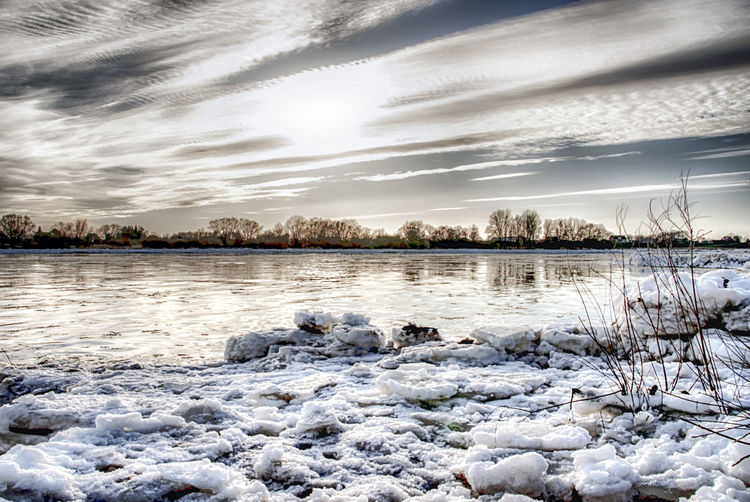 Drifting ice floes in the Elbe Calm Cold Cold Temperature Lake Lakeshore Nature Outdoors Reflection Rippled River Scenics Standing Water Tranquil Scene Tranquility Tree Water Waterfront Weather Winter