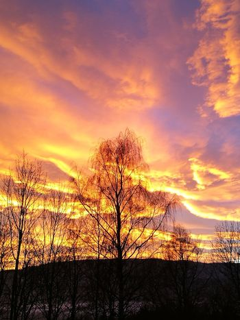 Sunset Sky Nature TreeCloud - Sky Dramatic Sky Orange Color Beauty In Nature Silhouette Scenics No_filter_at_all Beauty In Nature No People Sun Landscape Outdoors