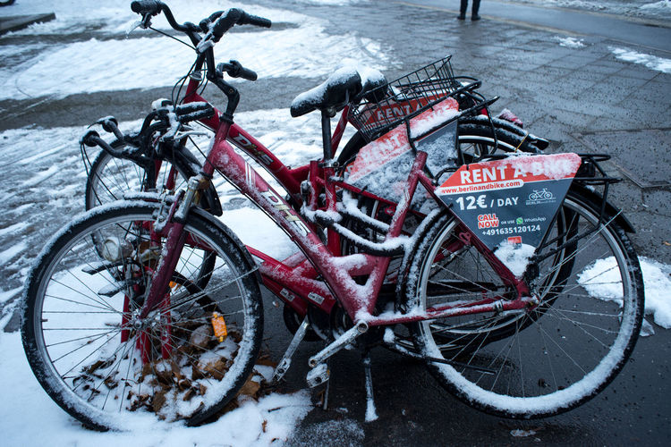 Berlin Bicycle City City City Life Cold Temperature Day Europe Outdoors Red Rental Rental Bicycle Rental Bikes Snow Strees Streetphotography Transportation Tree Trees Winter