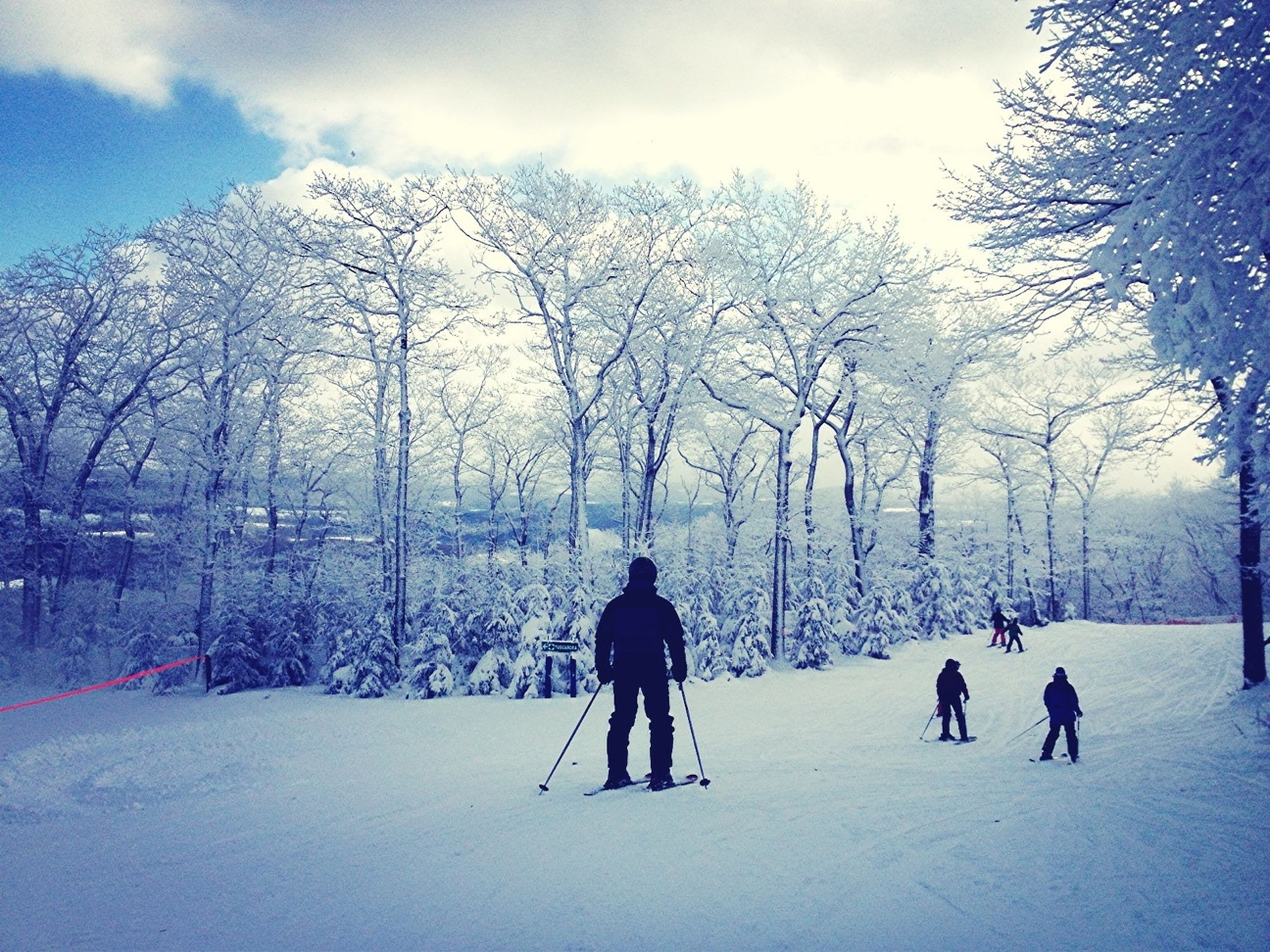 snow, winter, cold temperature, season, weather, tree, leisure activity, lifestyles, warm clothing, bare tree, men, sky, full length, landscape, tranquil scene, covering, tranquility, nature, rear view