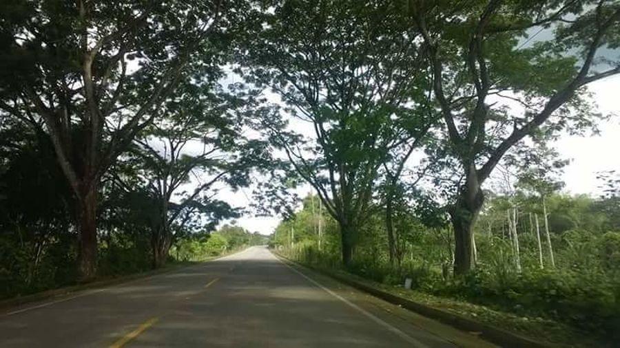 Vía El Carmen — Pedernales