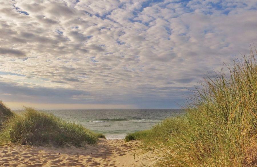 Soft evening light by the North Sea. Denmark EyeEm Tadaa Community The NorthSea