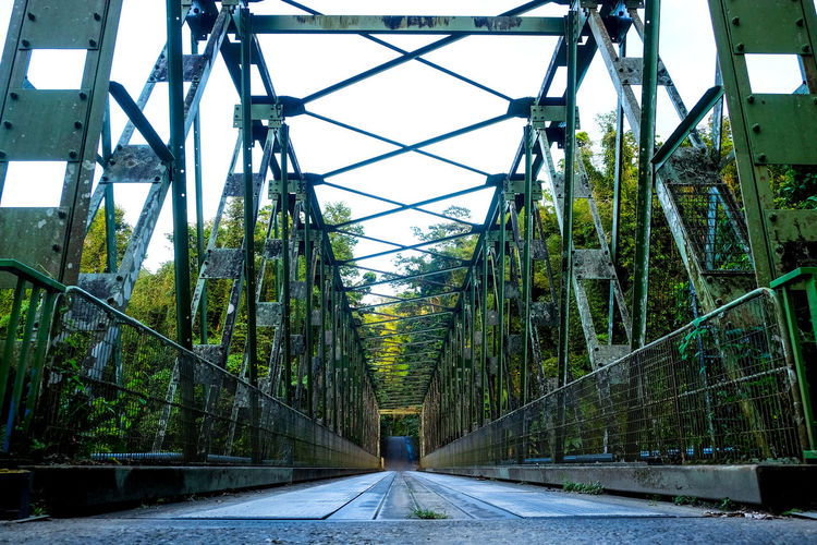 Bridge Jungle