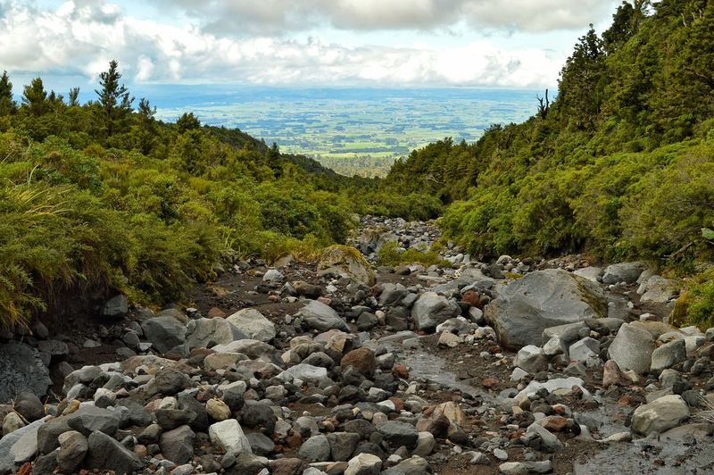 looking down the slopes of mt taranaki to the farmlands below. 🐒🙏🙏🌲🌲 The Great Outdoors With Adobe The Great Outdoors - 2016 EyeEm Awards Great View EyeEm Masterclass Having Fun Exploring Tadaa Community Nature Mt Taranaki Landscape. Eye4photography  Kiwi Clicker Hello World Getting Inspired Forestwalk Forest Stream Mountain View New Zealand Scenery Nature Photography Nature On Your Doorstep On The Mountain Check This Out Beatiful Nature Looking Down Walking Around