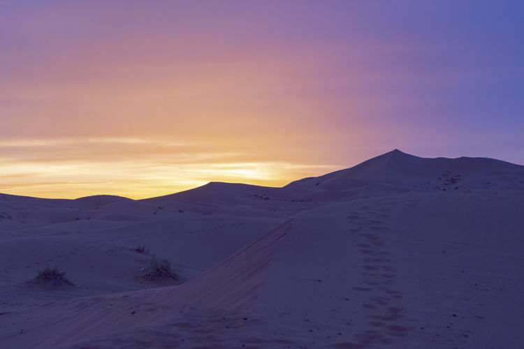 Sky Sunset Sunrise Tranquil Scene Tranquility Landscape Cold Temperature Remote Desert Arid Climate Cool Morning  Desert Landscape Purple Sky Pink Sky Orange Sky Sahara Sahara Desert North Africa Middle East No People Sand Sand Dune Tracks In The Sand Footprints In The Sand Horizon
