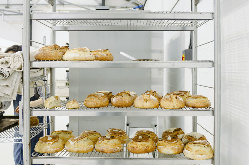 Baked Indoors  Food Food And Drink Freshness Bakery Store Still Life No People Bread Ready-to-eat Indulgence Shelf Retail  Commercial Kitchen Transparent Appliance Occupation Tray Sweet Food Baking Sheet Temptation Display Cabinet