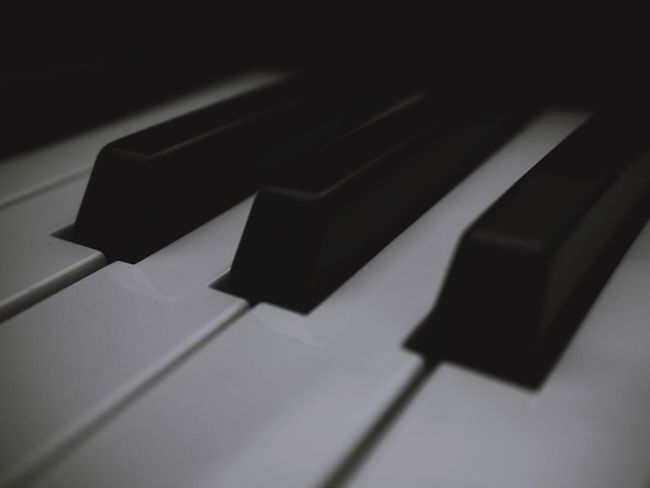 Shadow No People Indoors  Music Close-up Musical Equipment Arts Culture And Entertainment High Angle View Musical Instrument Black Color Piano Sunlight Piano Key Day Still Life Keyboard Instrument White Color Keyboard Nature Metal Focus On Shadow