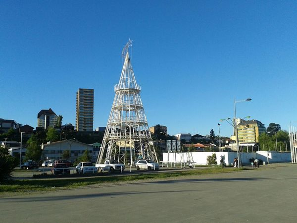 Christmas Tree Arbol De Navidad Chile