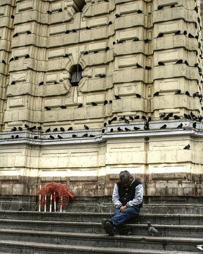 Man Sleeping Church Birds Lines Centeroflima Oldman