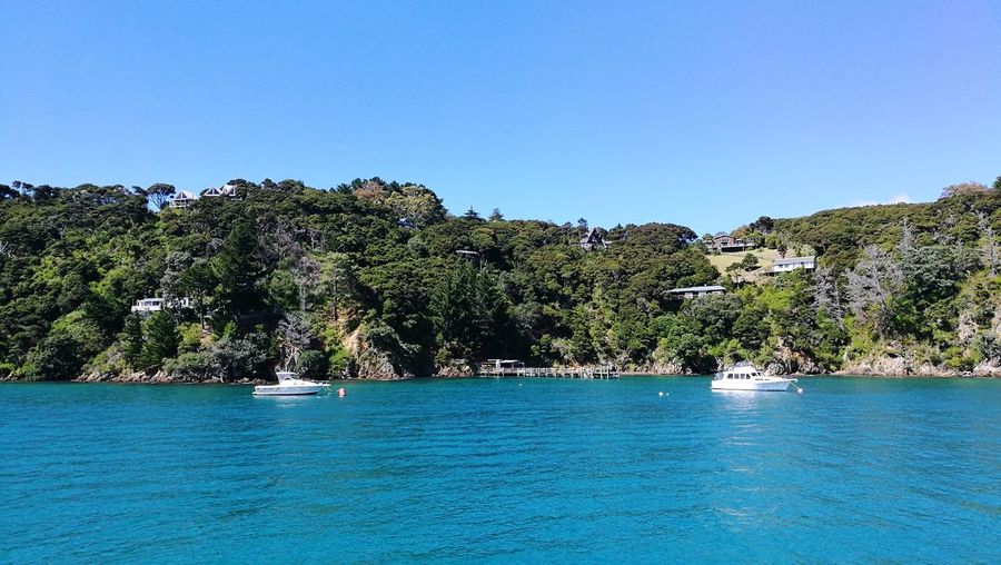 Boating in Kawau Island Kawau Island Boat House On Cliff Yacht Waterfront Tree Blue Water Sea Nature Tranquility Beach Scenics Vacations Travel Destinations