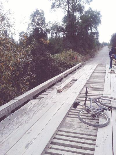 """"""" puente que une un recuerdo..un dulce recuerdo de aquellas epocas de infancia"""""""