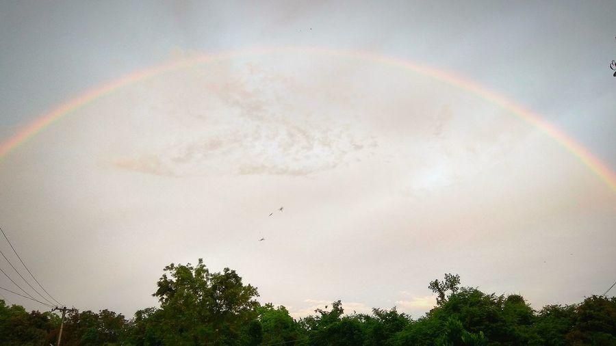 Rainbow after rain. Rainbow Sky