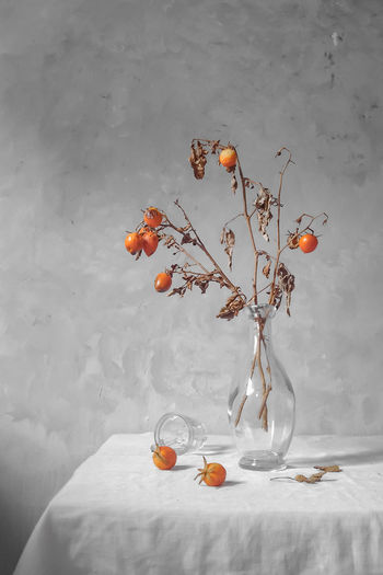 Wilted plant in vase on table against wall