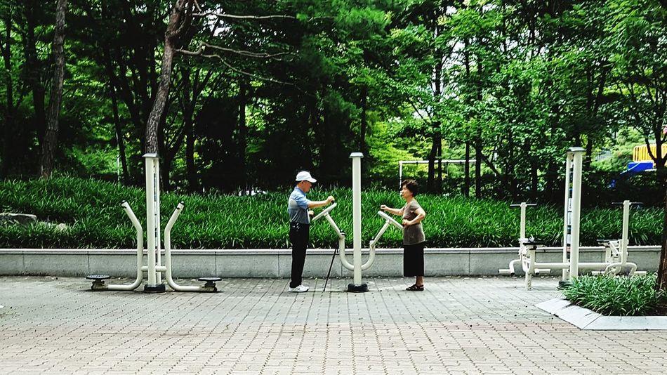 People Tree Full Length Adult Day Men Exercising Exercise Equipment Oldies EyeemShot Eyeem Market EyeEm EyeEmNewHere Street Eyeemstreetphotography EyeEmStreetshots Investing In Quality Of Life