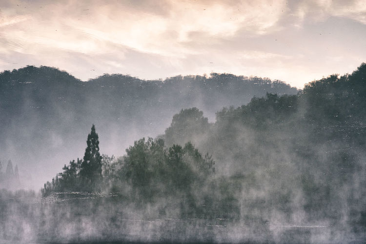 Beauty In Nature Day Fog Growth Hazy  Korea Landscape Mist Mountain Nature No People Outdoors Place Of Worship Religion Scenics Sky Spirituality Tranquil Scene Tranquility Tree