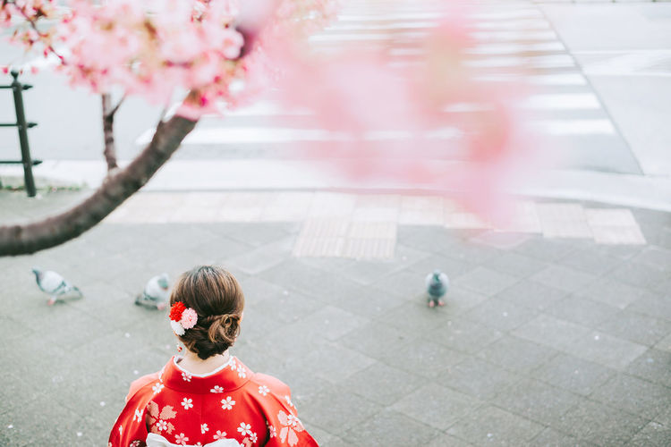 Rear view of woman with pink umbrella standing in city