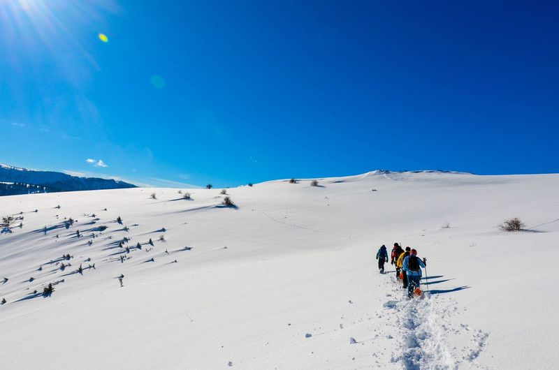 People on snowy landscape against clear sky
