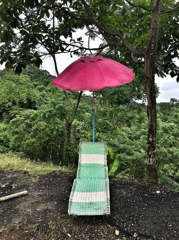 No filter Old Sunlounger and a pink parasol 70s Relaxing Retro Design Retro Old Nature Photography One Pink Parasol Sunlounger Alone Lonely