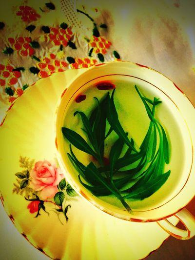 Liquid Lunch Herbal Tea Healthytea Healthydrink Healthy Lifestyle Healthylife Healthyfood Healthyeating Healthyliving Naturally Health Healthtea Organic Organicdrink Organic Food Organictea IPS2016Stilllife
