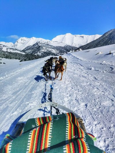 Husky Mushing Baqueira BaqueiraBeret Snow Mountain Sport Nature Day Beauty In Nature Be. Ready. It's About The Journey