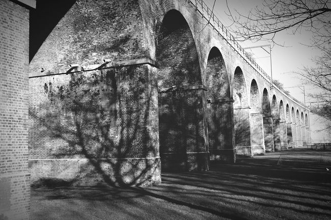 Railway Viaduct Railway Railway Bridge Arches Railway Arches Tree Shadow Light And Shadow Shadows Bare Trees Black & White Black And White Black And White Photography United Kingdom Nikon D3200