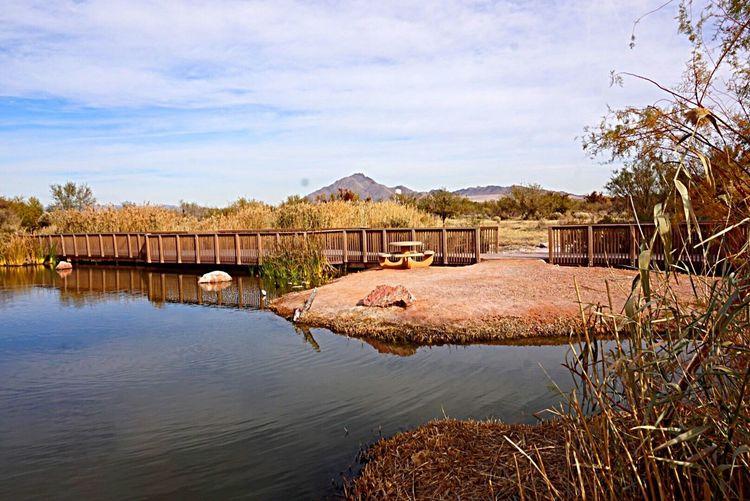 Wetland EyeEm Best Shots Nature_collection Lake View Eye4photography  EyeEm Gallery