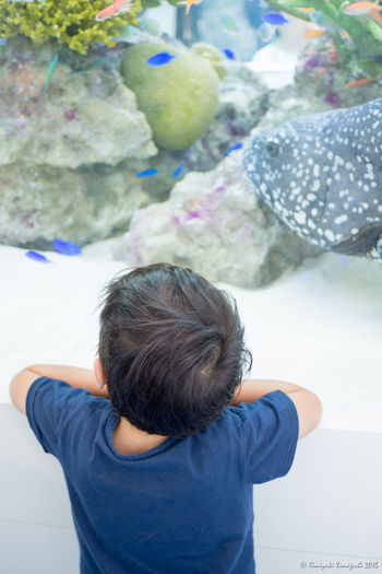 I like fish / お魚さん、すき♡ Fish Fishes Aquarium Boy Olympus Olympus Om-d E-m10 Enjoying Life City Life