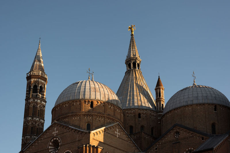The domes of the Basilica of Saint Anthony of Padua Italy Basilica Church Padova Architecture Building Exterior Built Structure City Clear Sky Day Dome No People Outdoors Padua Place Of Worship Religion Sky Spirituality St Anthony Tower Towerbell Travel Destinations