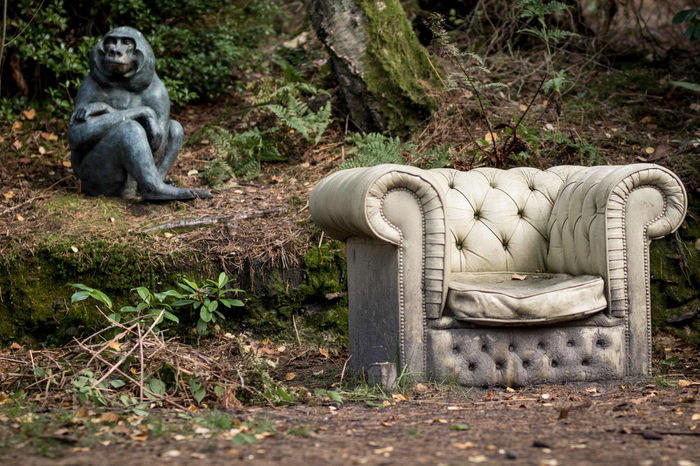 Take a seat Animal Themes Animals In The Wild Comfortable Day Forest Full Length Mammal Nature No People One Animal Outdoors Sculpture Sculpturepark Sitting Statue Streamzoofamily