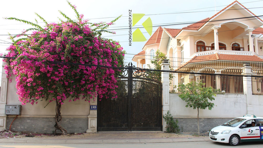 Aluminum villa gate Designs Aluminum Gate Architecture Gate Gate,fence Gates Luxury Villa Outdoors Villas Villas Gate Design