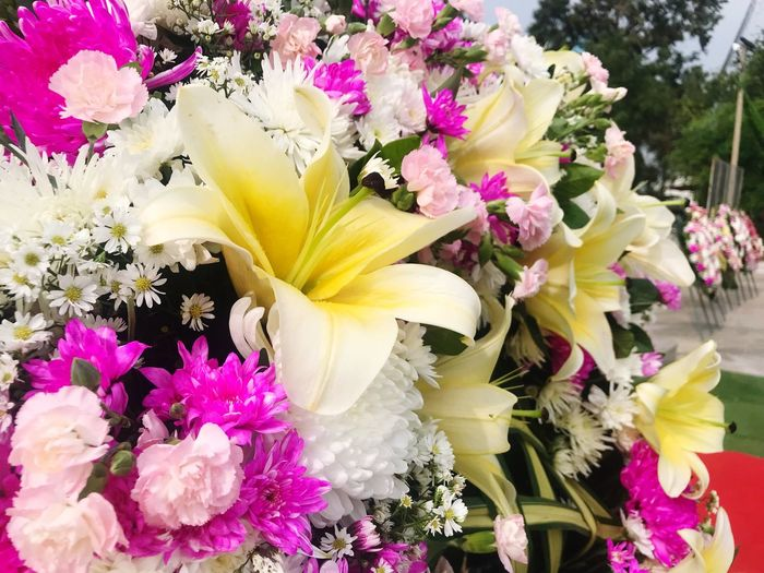 Flower bouquet Freshness White Flower Yerbera Orchid Tulips🌷 Flowering Plant Flower Freshness Vulnerability  Fragility Plant Beauty In Nature Multi Colored Yellow Growth Petal Flower Head Nature Pink Color Variation