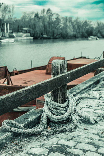 Gualeguaychu Argentina Close-up Connection Day Focus On Foreground Harbor Metal Nature No People Outdoors River Rope Strength Tied Up Transportation Tree Water Wood - Material The Great Outdoors - 2018 EyeEm Awards The Traveler - 2018 EyeEm Awards The Street Photographer - 2018 EyeEm Awards