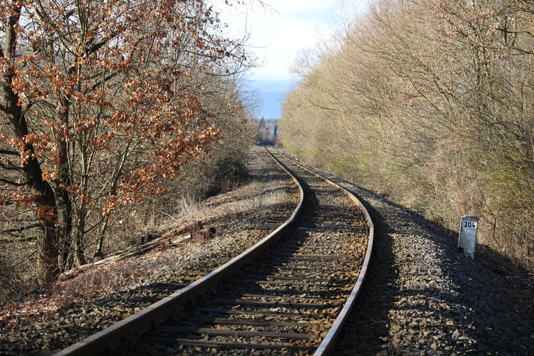 View of railroad tracks along bare trees