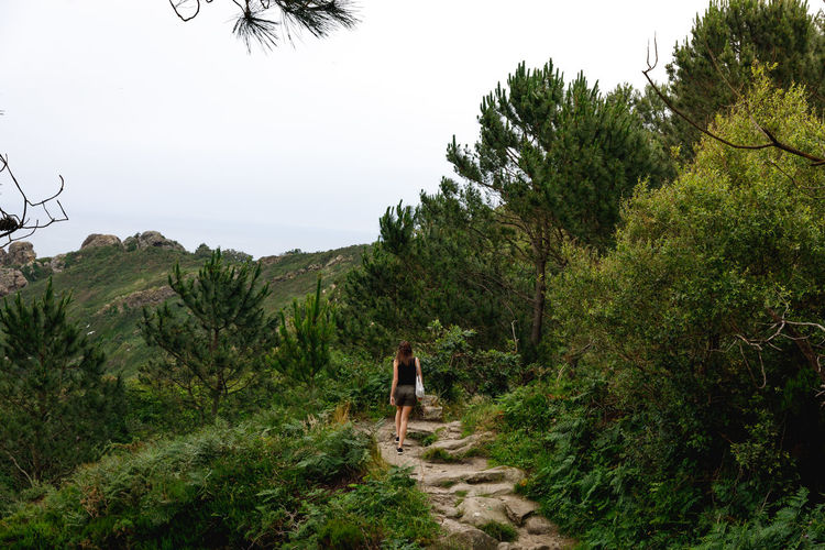 San Sebastián Coastline Travel Adventure Beauty In Nature Day Forest Full Length Green Color Growth Land Landscape Leisure Activity Lifestyles Nature Outdoors People Plant Real People Rear View Scenics - Nature Sky Tranquility Travel Destinations Tree Walking The Great Outdoors - 2018 EyeEm Awards The Traveler - 2018 EyeEm Awards A New Beginning