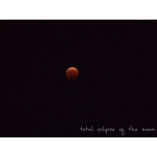 こんばんは✩✩ 昨日はたくさんのお祝いのお言葉ありがとうございます♥ * とても嬉しかったです♩゜ まだお返事返せていない方すみません。。 * また改めてお返事させてください♩♩ * 昨日は息子の誕生日、そして皆既月食と2大イベントでした!!笑 皆既月食、初めて自分の目で見ましたが綺麗で感動しました…🌙 皆既月食 Totaleclipseofthemoon Moon 月