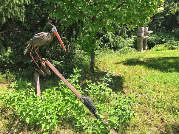 Sculptures Sculptor Marcel Braitstein Bug Sculptures Bird Sculpture No People Green Color Day Outdoors Grass Tree Nature