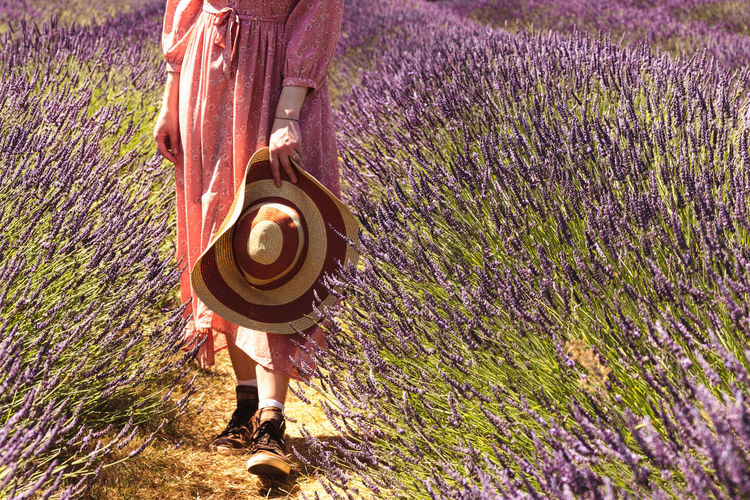 Rear view of woman standing on lavender field