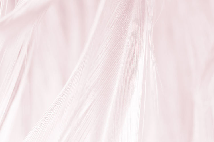 Textile Backgrounds Full Frame Close-up No People Textile Industry Material Textured  Silk Pattern White Color Abstract Softness Wool Simplicity Pink Color Elégance Indoors  Cotton Fashion Abstract Backgrounds Purple