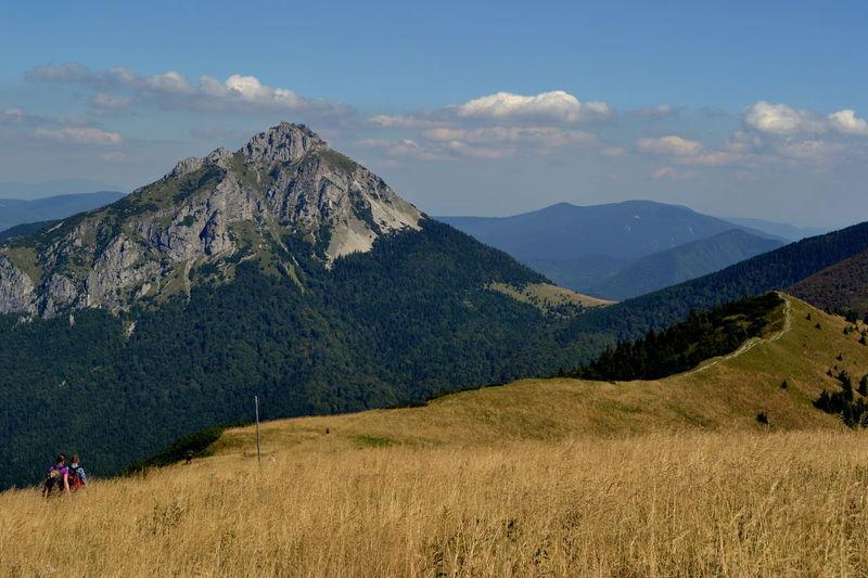 Krywań #EyeEmBestShots #EyeEmNewHere #EyeEmSelects #Mountain #Mountains #Nature  #eyeemphotography #hiking #naturephotography #photography #travel Beauty In Nature Environment Landscape Mountain Peak Outdoors Sky The Great Outdoors - 2018 EyeEm Awards