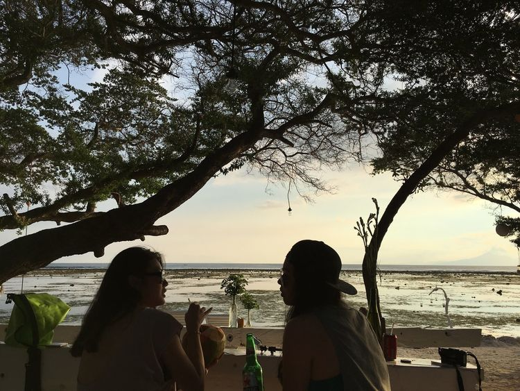 Tree Togetherness Beach Real People Water Leisure Activity Friendship Women Lifestyles Men Sea Nature Outdoors Sky Beauty In Nature Sunset Silhouette Sand Scenics Sitting