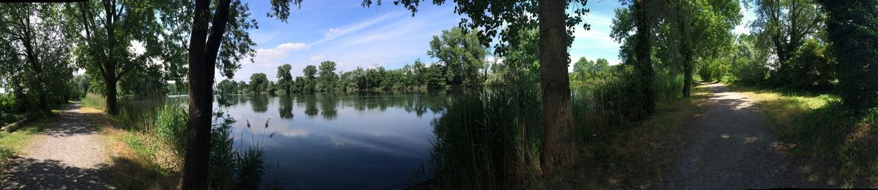 Zibido Lago Mulino San Pietro Cusico Walk Landscape Tranquil Scene Beauty In Nature Lake View Tranquility Panoramic Sky Green Color Blu Color Love Photography No Filters Or Effects IPhone 5S Panoramica 2016 ☀️