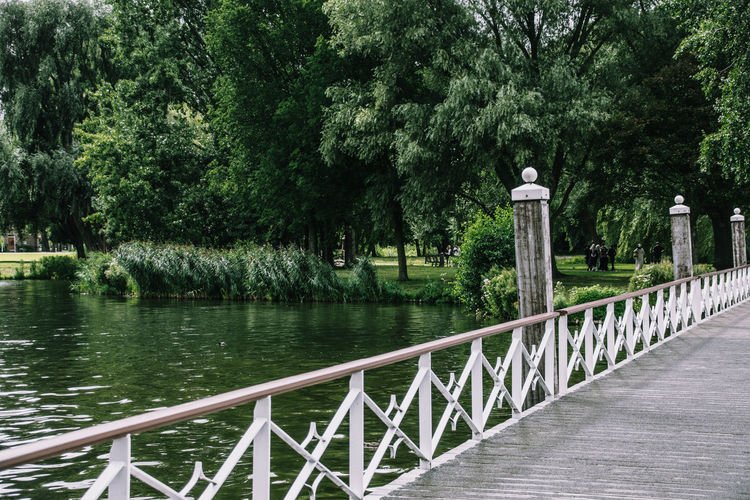 Netherlands Rotterdam Day Growth Kralingsebos Nature No People Outdoors Railing Tree Water