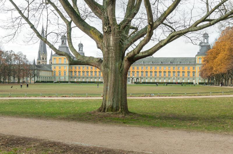 Bonn Art Museum