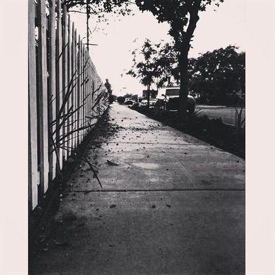 Freedom ... Nobody stop you if you want Ekinlerdizekadaradlicalismam Losangeles California NorthHollywood Hollywood La Cali Cali4nia Calife Istanbul Besiktas Siyah Beyaz Beşiktaşk Turkishgram Instamod Instagood Aniyakala Bestshots_ph Bestshots