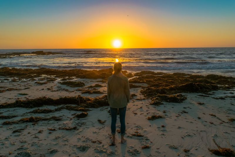 Sea Water Sunset Beach Sun Standing One Person Wave San Diego Silhouette Nofaces Girl Thoughts