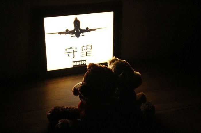 Come Back MH370 Teddy Bear Waiting