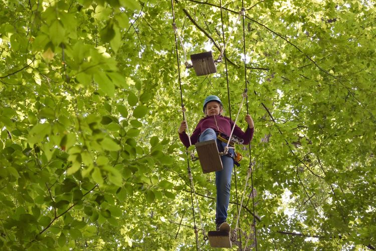 Kandel, Rheinland Pfalz, Germany -July 7, 2018: Fun forest - climbing adventure park. Young girl walking on wooden planks high up in the trees. Height Ropes Extreme Wire Harness Helmet Balance Danger RISK Safety Gear Forest Fun Climbing Adventure Plant Tree Leisure Activity Casual Clothing One Person The Great Outdoors - 2018 EyeEm Awards Nature Lifestyles Green Color Real People Low Angle View Day Sunlight Forest Front View Outdoors