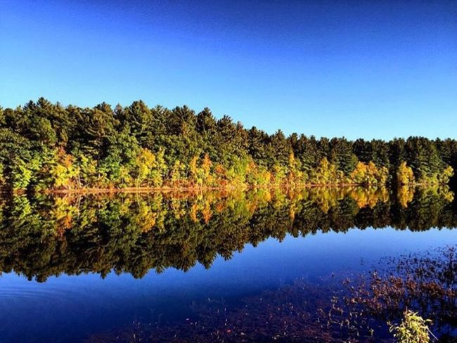 Reflection Water Lake Tranquil Scene Blue Clear Sky Scenics Tranquility Autumn Tree Calm Majestic Idyllic Waterfront Travel Destinations Symmetry Nature Non-urban Scene Standing Water Growth