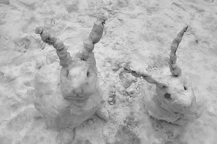 christmasbunnies Berlin Im Winter Animal Themes Christmas Decoration Christmasbunnies Day High Angle View Mammal Nature No People Outdoors Snowman⛄ Shades Of Winter